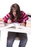 Young student studying for exams Royalty Free Stock Photography