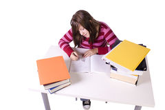 Young student studying for exams Royalty Free Stock Image