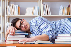 The young student taking break and falling asleep. Young student taking break and falling asleep Stock Images