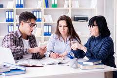 The young student and teacher during tutoring lesson Royalty Free Stock Images