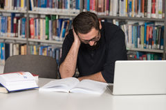 Young Student Using His Laptop In A Library Royalty Free Stock Photos