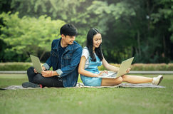 Young student using laptop together. In the park Royalty Free Stock Photography
