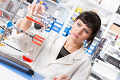 Young student woman medical / scientific research / doctor make food quality Royalty Free Stock Photo