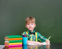 Young student writes in a notebook.  Royalty Free Stock Images