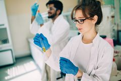 Young students of chemistry working in laboratory. Young students of chemistry working together in laboratory Royalty Free Stock Images