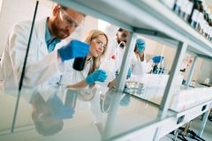 Young students of chemistry working in laboratory Royalty Free Stock Photo