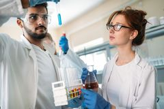 Young students of chemistry working in laboratory Stock Photography