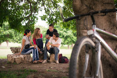 Young students doing homework in college park. Young people at school, group of four college students doing homeworks in park Royalty Free Stock Photography