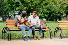Young students sitting on bench and studying in park together Stock Photography