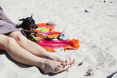 Young stylish hipster woman playing dog russell in tropical beach, cool outfit, romantic mood, having fun, sunny, horizontal, vaca Royalty Free Stock Image
