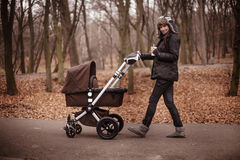 Young stylish mother walking in the fall  park with stroller. Young stylish mother walking in the fall  park with brown stroller holding cap with hot beverege Royalty Free Stock Image