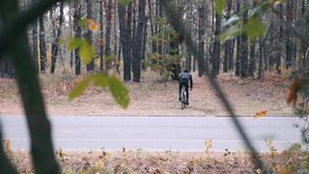 Young stylish professional male cyclist in black helmet and sports sunglasses pedaling on cyclocross bike through autumn park. Rea. R view of triathlete stock footage