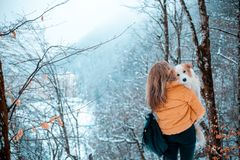 Young stylish travel woman in mountain forest, looking forward, holding a dog, happy positive mood, winter, bohemian. Style outfit, view from back stock image