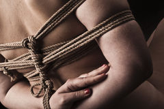 Young submissive woman in japanese bondage takate kote / BDSM th Royalty Free Stock Photos