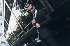 Young and successful. royalty free stock images
