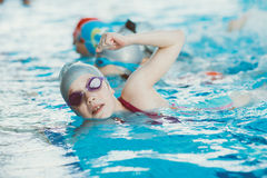 Young and successful swimmers pose Royalty Free Stock Images