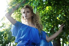 Young summer beauty Royalty Free Stock Photos