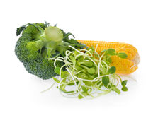 Young sunflower sprouts corn broccoli Royalty Free Stock Photos