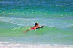 Young surfer girl. Stock Photos