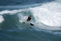 A young surfer re-enters the crest of a wave Royalty Free Stock Photo