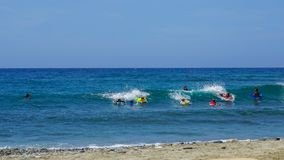 Young surfers raffle the waves of a Caribbean beach on a beautiful sunny day Royalty Free Stock Images
