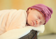 Young sweet baby sleep in crate Royalty Free Stock Image