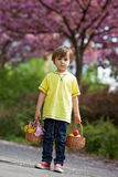 Young sweet boy, carrying two baskets with flower and eggs, walk Royalty Free Stock Images