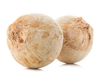 Young sweet coconuts close-up isolated on white background. Stock Image