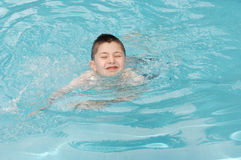 Young swimmer. A young boy struggles a little as he swims in the pool royalty free stock photo