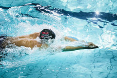 Young swimmer breaststroke, closeup side view Stock Photos