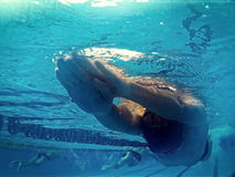 Young swimmer in pool Stock Photos