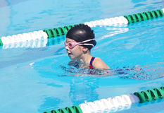 Young Swimmer at Swim Meet. A young swimmer competing in the breaststroke at a swim meet Stock Image