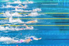 Young swimmers in outdoor swimming pool during competition. Health and fitness lifestyle concept with kids. Young swimmers in outdoor swimming pool during royalty free stock photos
