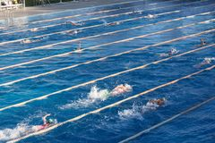 Young swimmers in outdoor swimming pool during freestyle race. Health and fitness lifestyle. Young swimmers in outdoor swimming pool during freestyle race stock photos