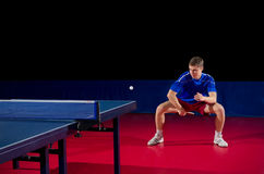 Young table tennis player Royalty Free Stock Images