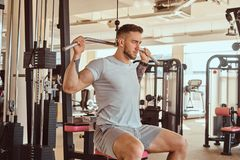 Young tattoed man is doing exercise for back on training apparatus in gym.  royalty free stock image