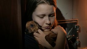Young teen girl in the dark with a little doggy, UHD 4K stock footage