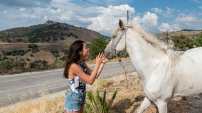 Young teen girl with white horse royalty free stock image