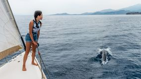 Young teen standing on the deck of a sailboat with dolphin stock image