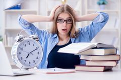 The young teenage female student preparing for exams at home Royalty Free Stock Images