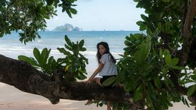 Teenager sitting on tree at beach royalty free stock photo