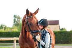 Young teenage girl equestrian kissing her chestnut horse. Stock Photography