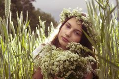 Young teenage girl at the field Stock Photos