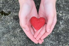 Girl hands holding red heart stock images