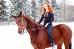 Young teenage girl riding bay horse in winter park stock image
