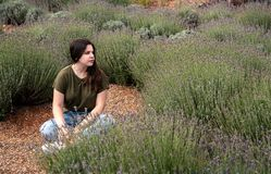 Teenage girl sitting and enjoying the beautiful fresh lavender h Stock Images