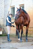 Young teenage lady equestrian washing her brown horse in shower. Chestnut horse enjoying of washing in cool shower. Colored outdoors vertical summertime image Royalty Free Stock Photography