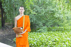 Young Thai monks Royalty Free Stock Images
