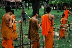 young theravada buddhist monks building a bamboo structure at the garden of the monastery stock photos