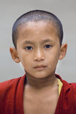 Young Tibetan Buddhist monk, Dharamsala, India Royalty Free Stock Photography